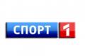 "РФ: канал ""Спорт"" отказался от места во втором мультиплексе"